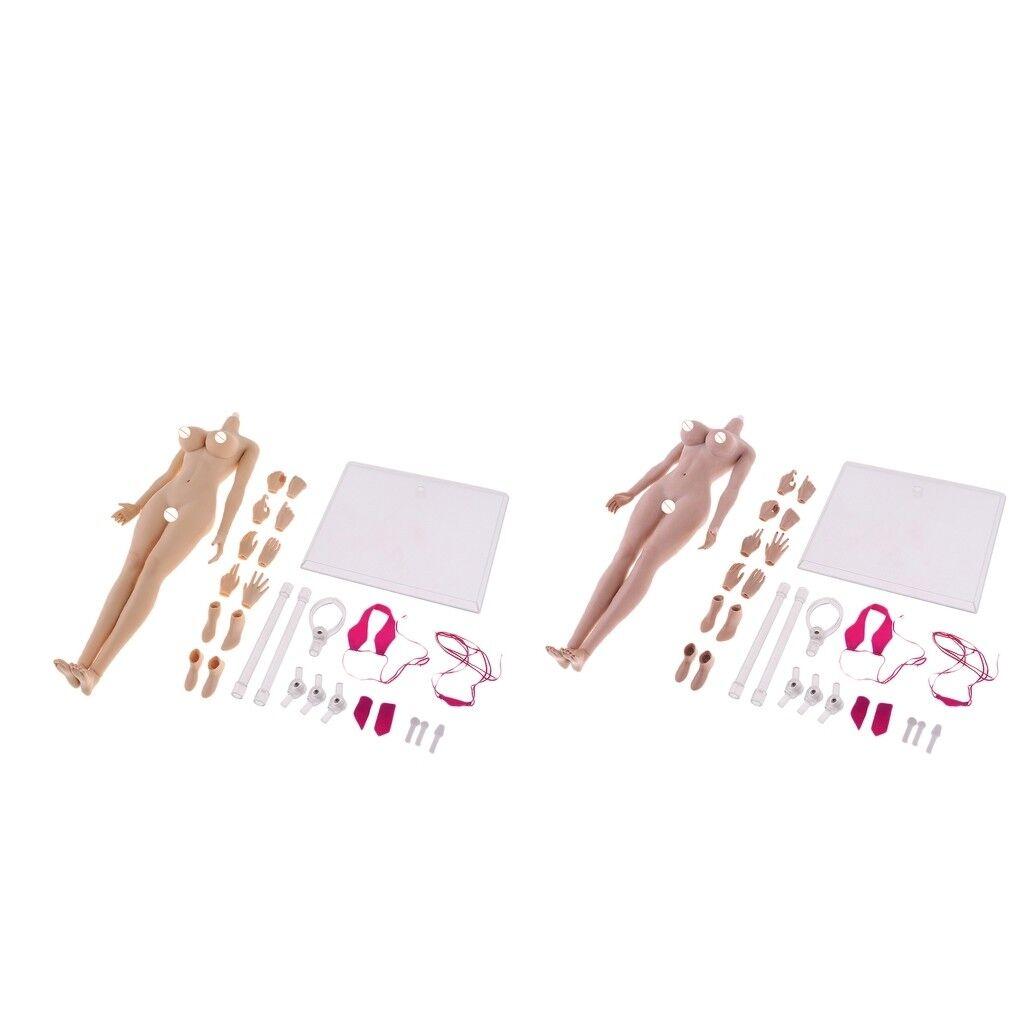 2 Set Female Body Action Figure Doll PVC Model Set in Bikini w  Accessories