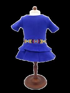 American Girl Doll of the Year Saige Meet Dress