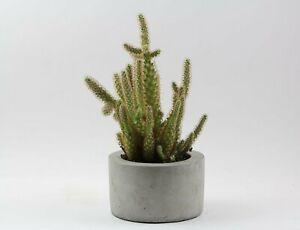 Round-Concrete-Planter-Flower-Pot-Handmade-Home-amp-Garden-Decor-Natural-Gray