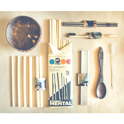 10 Bamboo Reusable Straws w/ Cleaner - Sustainable, Organic & Biodegradable