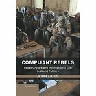 Compliant Rebels: Rebel Groups and International Law in World Politics by Hyeran Jo (Paperback, 2016)