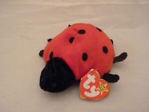 1995 Ty Original Beanie Babies LUCKY The Ladybug Style 4040 w ERROR ... 245b9858236b