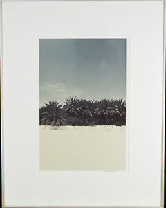 Untitled-Palm-Trees-Signed-Photograph-By-Chet-d-039-Autremont-Framed-21-1-2-034-x17-034