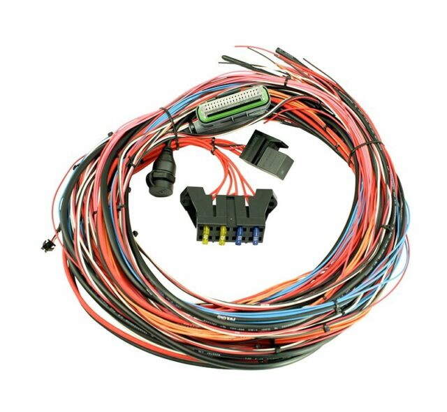 AEM EMS 4 Flying Lead Wiring Harness With Fuse and Relay Panel 96