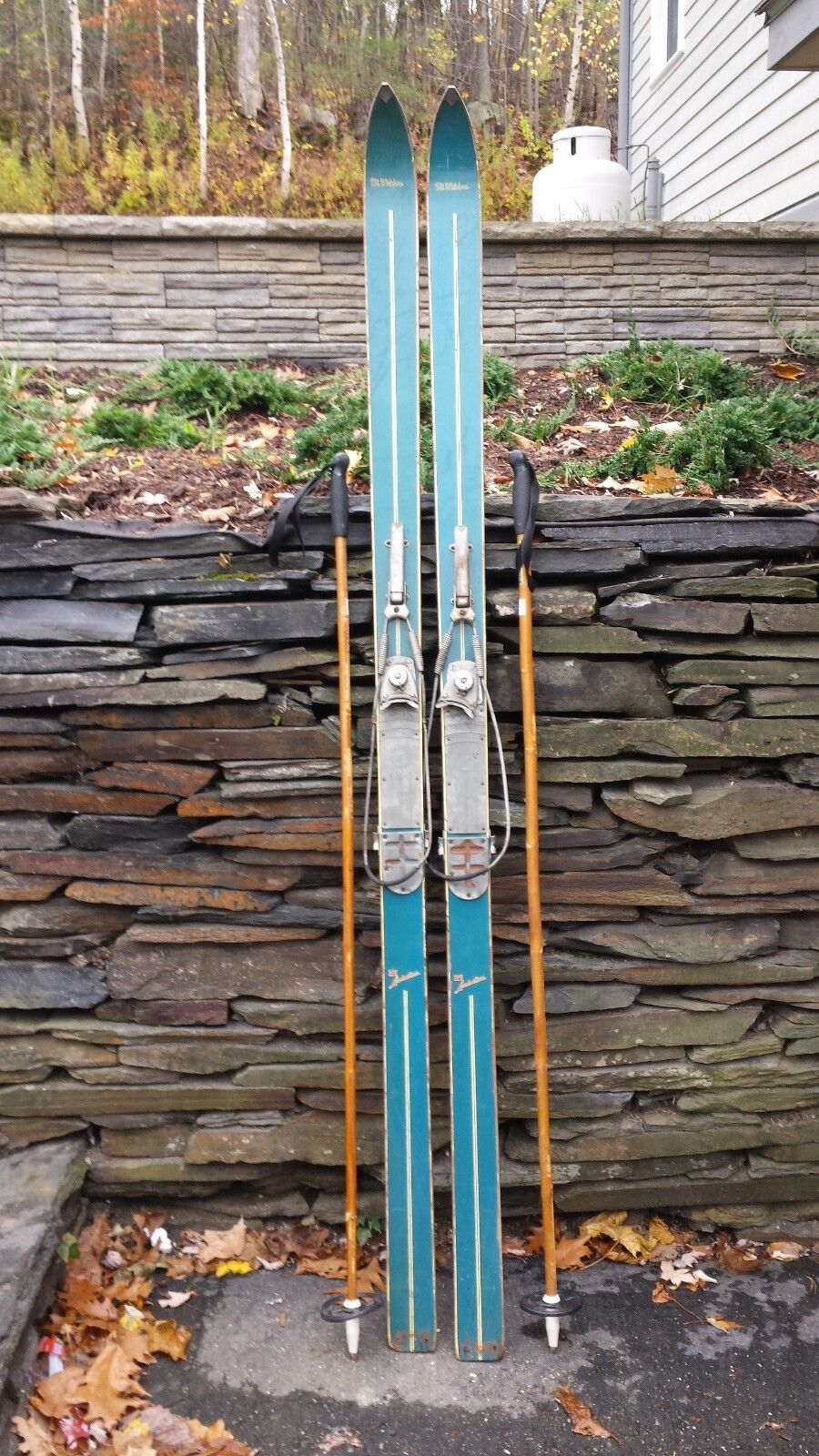 GREAT OLD Wooden Skis 76  Long Sign MT WHITEHORN + Cable Binding + Bamboo Poles