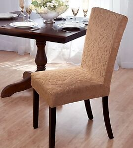 Damask Stretch Velvet Dining Chair Cover Beige Available In 4