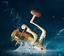 Spinning-Fishing-Reel-12BB-Metal-Spool-Folding-Arm-Left-Right-5-2-1-EF500-EF9000 thumbnail 7