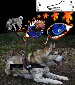 Brown-Dog-Harness-S-M-L-XL-padded-extra-Siberian-Husky-Malamute-Staffordshire