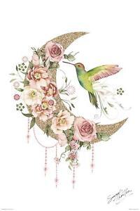 Summer-Thornton-Moon-POSTER-61x91cm-NEW-crescent-beautiful-flowers-bird-art