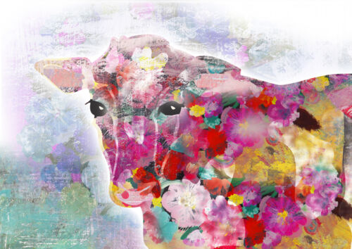 CANVAS Colorful Cow 18x12 Gallery Wrap Giclee Edition by Claudia Schoen