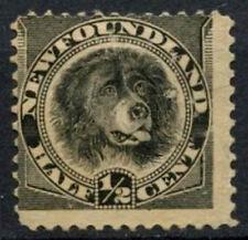 Newfoundland 1894 SG#59, 1/2c Black, Dog Unused No Gum #D44493