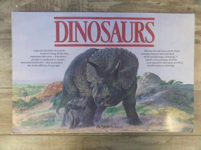 Dinosaur Poster Book (A Salamander Book) by Rh Value Publishing