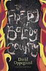 The Firebug of Balrog County von David Oppegaard (2015, Taschenbuch)