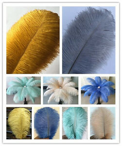 Wholesale-10-100pcs-Special-colors-Natural-Ostrich-Feathers-6-24inches-15-60cm