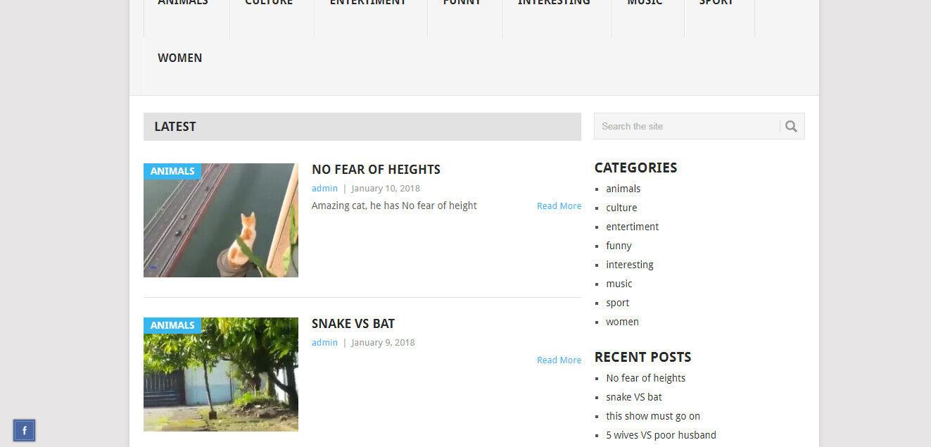 Wordpress video website template+plugins(copy/paste youtube,vimeo video)+support 2