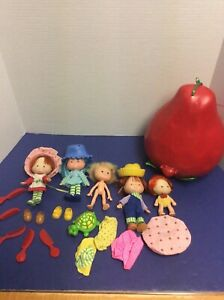 Vintage 1980 S Lot Of Strawberry Shortcake Dolls And Accessories Ebay
