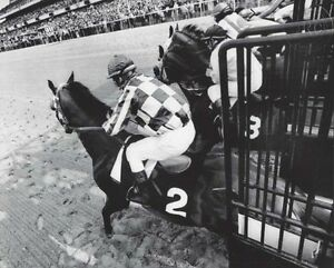 SECRETARIAT-amp-RON-TURCOTTE-ORIGINAL-1973-BELMONT-STAKES-STARTING-GATE-PHOTO