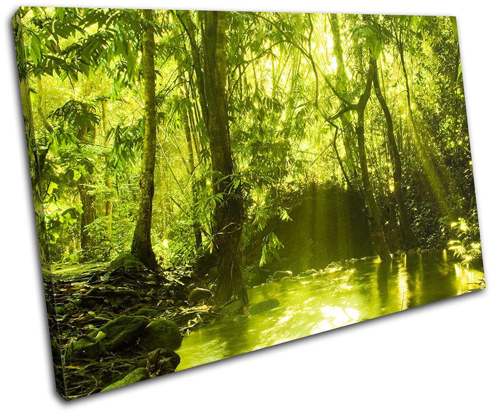 Forest Lake Landscapes SINGLE TOILE murale ART Photo Print