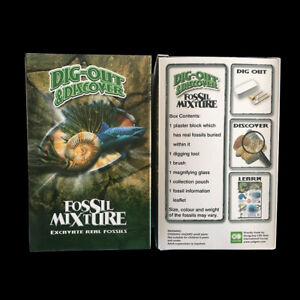 Real-Fossil-Excavation-Dig-Kit-with-6-Piece-Real-Fossil-Learning-Educational-Toy