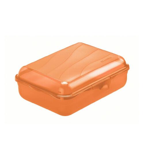 Rotho Lunch-Box Brot-Dose Vesperdose Schulbox Brotzeit Bento 1,25 Liter BPA-frei