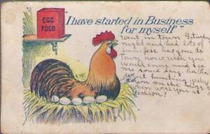 q5s-Chicken-Postcard-I-Have-Started-In-Business-For