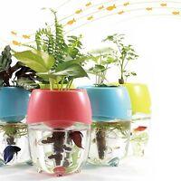 Aquaponic Fish Tank Aquarium For Betta Fish Water Garden Planter Top Lid Natural