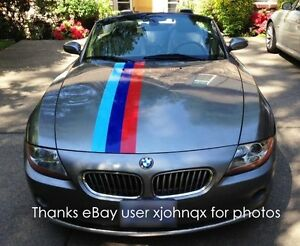 Bmw Fading Tail Flag And Stripes Rally M Colors For Bmw Z4