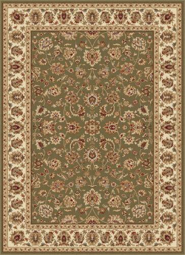 Green Vines Scrolls Oriental Area Rug Bordered Paneled Flowers Persien Carpet
