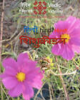 Shishukridan - A Hindi Learning Book for Children: A Hindi Play Book for Kids by Manju Kumar Maurya, Nikhil Bhatt, Purvi Bhatt (Paperback / softback, 2010)