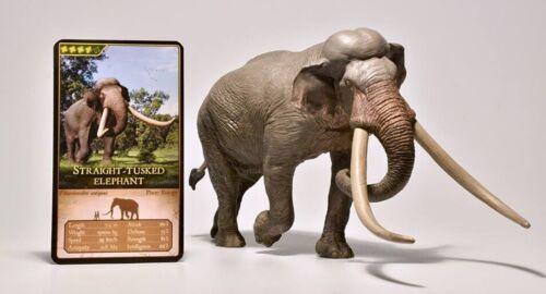 22 cm Dinowelt Eofauna 00701 Europäischer Waldelefant Palaeoloxodon antiquus