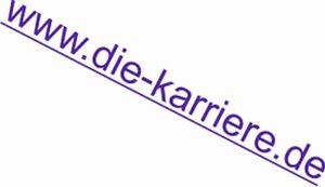 Top-Domain-Verkauf-die-karriere-de