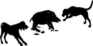 Dogs Hunting Hog Videos