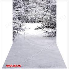 Christmas10'x20'Computer/Digital Vinyl Scenic Photo Backdrop Background SX618B88