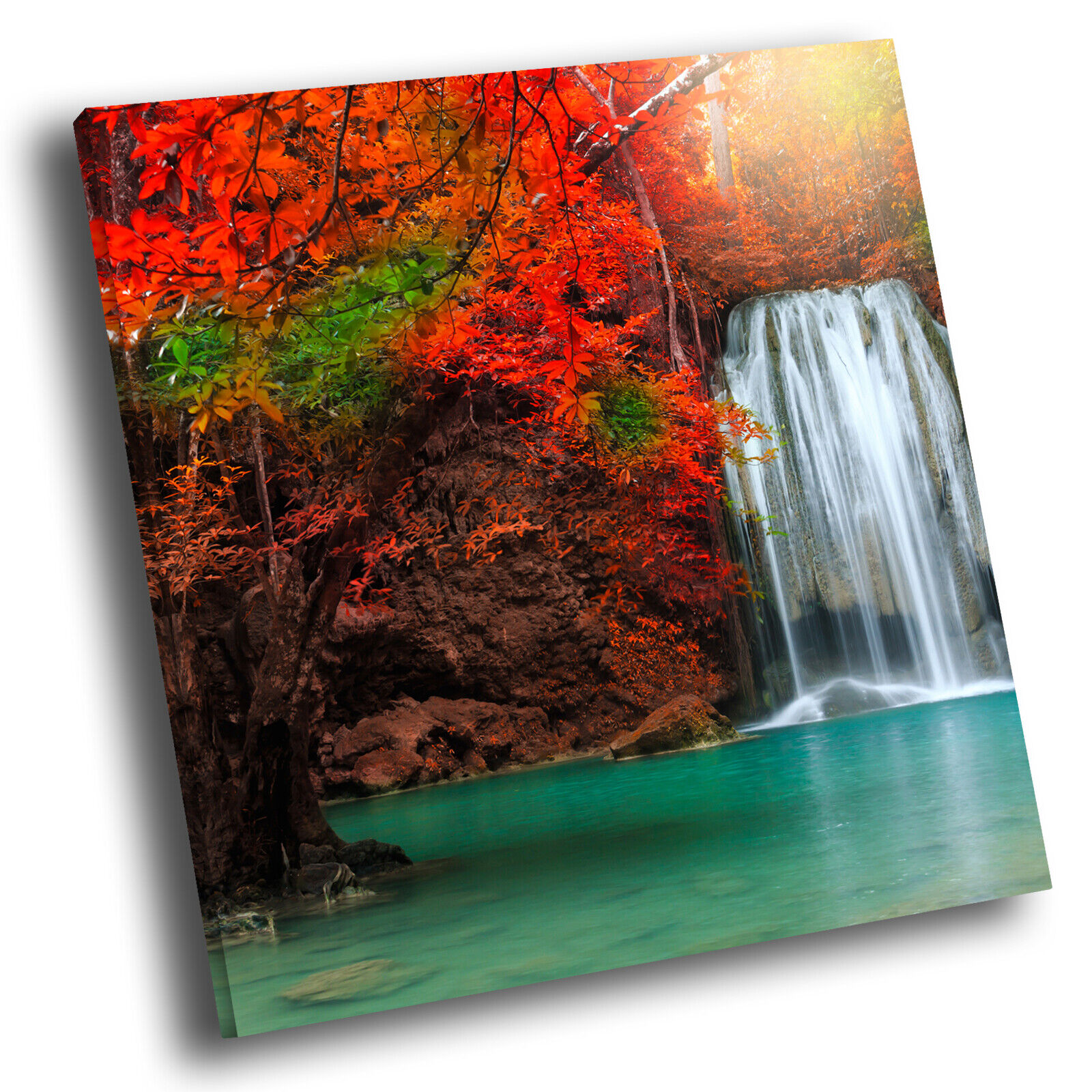 rot Tree Forest Waterfall Square Scenic Canvas Wall Art Large Picture Print