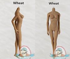 1/6 Jiaou Dolls Version 3.0 Female Nudes Wheat JOQ-06C-BS