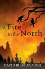A Fire in the North: Annals of Lindormyn 2 by David Bilsborough (Paperback, 2008)