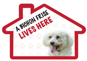 Details About A House Is Not A Home Without A BICHON FRISE Decal Sticker  Pet Animal Lover