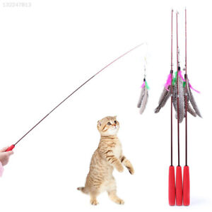 Three-Part-Bird-Feather-Teaser-Wand-Cat-Toy-Go-interactive-Funning-Funny-Stick
