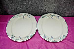 Pfaltzgraff-April-Set-of-2-14-034-Oval-Serving-Platters-M3910