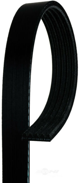 AC DELCO 7K390 Replacement Belt
