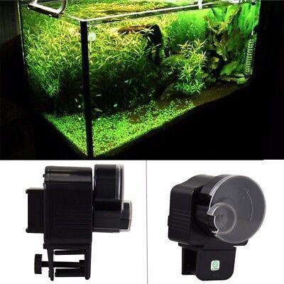 Mangiatoia per pesci automatico dispenser contenitore for Vasca per stagno