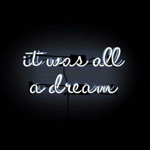 """It Was All A Dream White Acrylic Neon Sign 20/"""" Light Lamp Real Glass Beer Wall"""