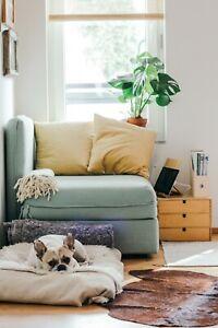 Nettoyage-de-lieu-appartement-immeuble-maison-terrain-etang-hopital