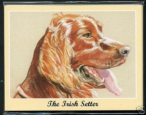 The Irish Setter Männer Bester Freund Hunderasse Perikim Sammler Karte Set