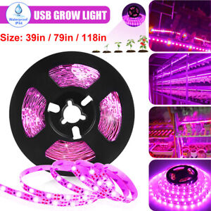 Waterproof LED Grow Light Strip Full Spectrum Lamp Indoor Plant Veg Flower 2835