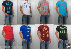 NWT-HOLLISTER-Men-Muscle-Slim-Fit-Desert-Springs-V-Neck-Tee-Shirt-By-Abercrombie