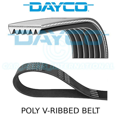Multi-Ribbed Belt Auxiliary 6 Ribs Fan Drive Dayco Poly V Belt 6PK1550
