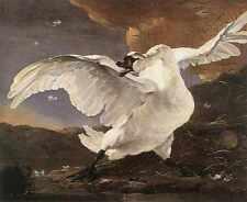 Jan Asselyn The Threatened Swan A4 Print