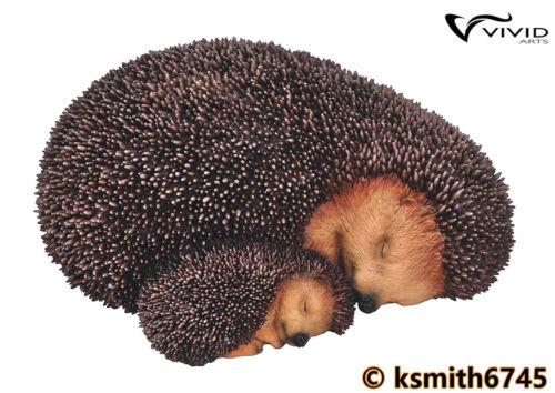 Vivid Arts Madre Riccio /& baby in resina animale Selvatico Giardino Ornamento Nuovo