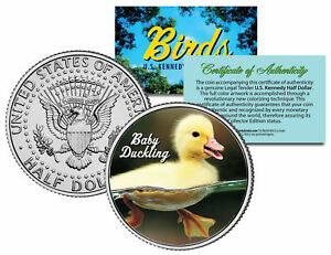 BABY-DUCKLING-Collectible-Birds-JFK-Kennedy-Half-Dollar-US-Colorized-Coin-DUCK